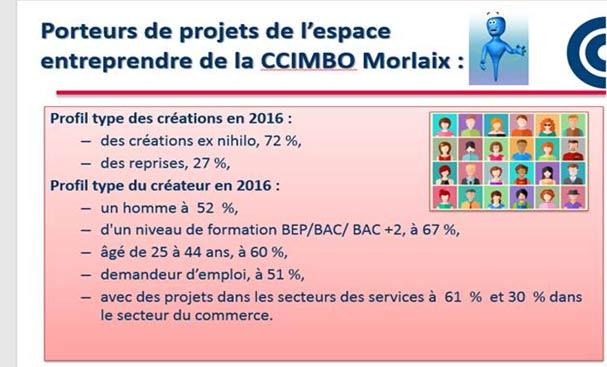 Profil type du créateur sur le territoire de la CCIMBO Morlaix en 2016