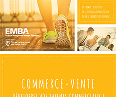 EMBA : formations supérieures en alternance commerce-vente 2019/2020
