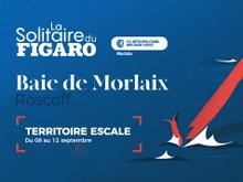 Vignette Solitaire du Figaro 2021